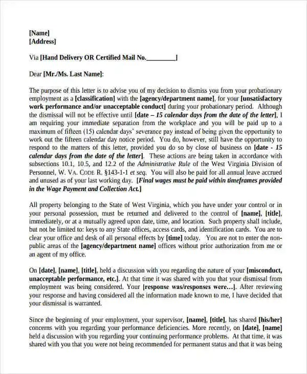 10+ Employee Recommendation Letter Template - 10+ Free Word, PDF - letter of employment recommendation