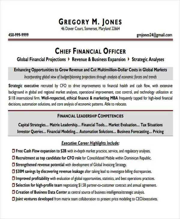25+ Professional Finance Resume Templates Free \ Premium Templates - chief financial officer resume
