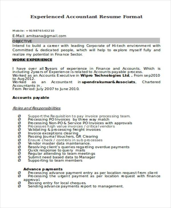 33+ Accountant Resumes in Doc Free  Premium Templates - accounts resume format