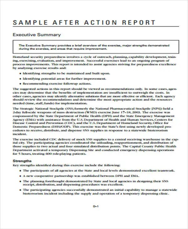 9+ Action Report Templates - Free Word, PDF Format Download Free