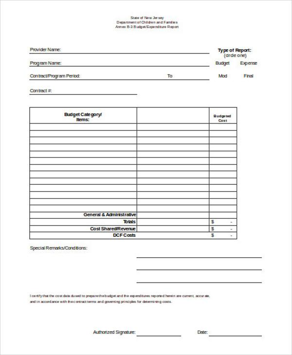 10+ Sample Budget Report Templates Free  Premium Templates - expenditure report template