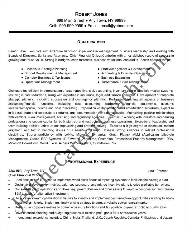 Cfo Resume Examples Cfo Resume Summary Financial Executive Resume