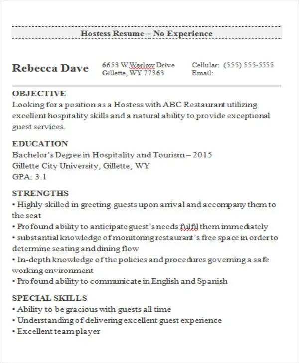 it sample resume entry level