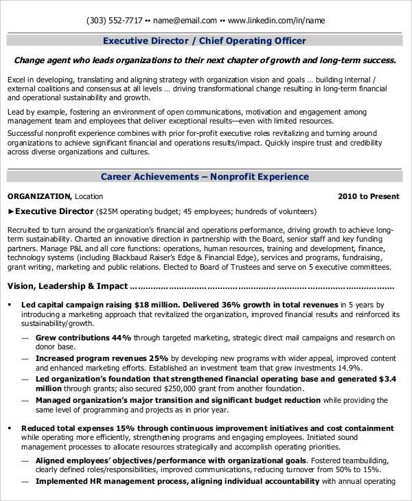 28+ Curriculum Vitae Templates - PDF, DOC Free  Premium Templates - capital campaign manager sample resume