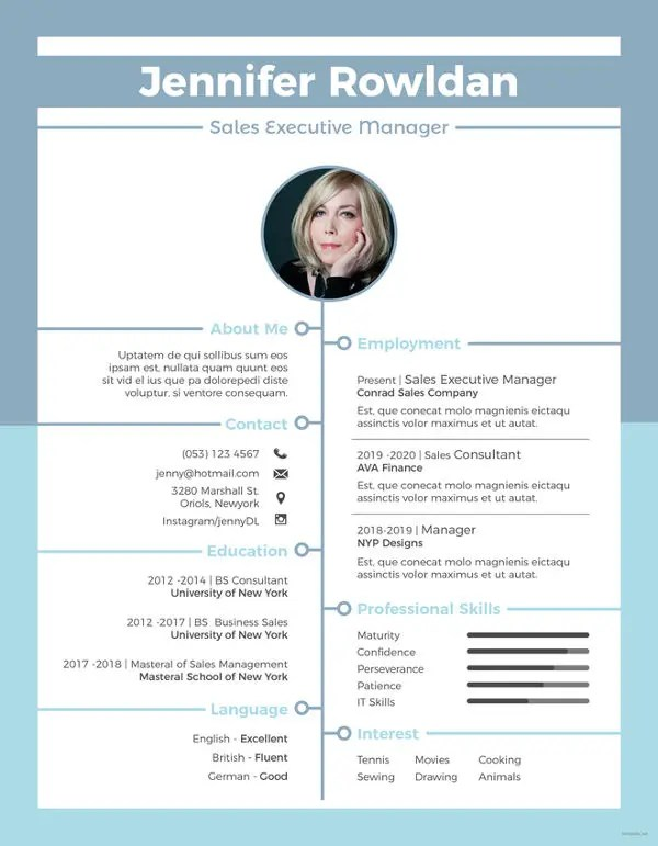 9+ Sales Executive Resume Templates - PDF, DOC Free  Premium - Sales Executive Resume Template