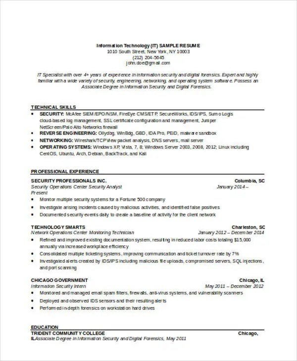 38+ Resume Format Templates Free  Premium Templates - information security engineer sample resume