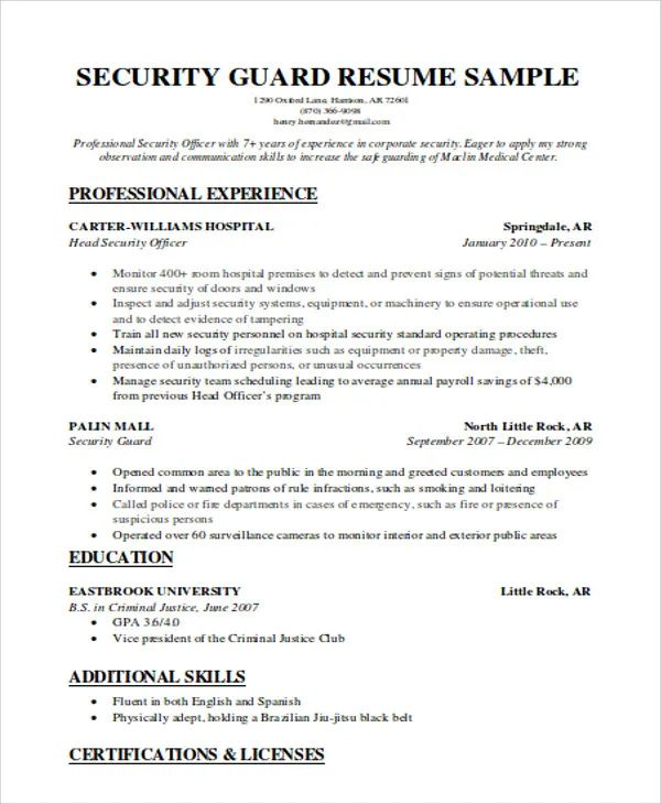entry level information security resume sample