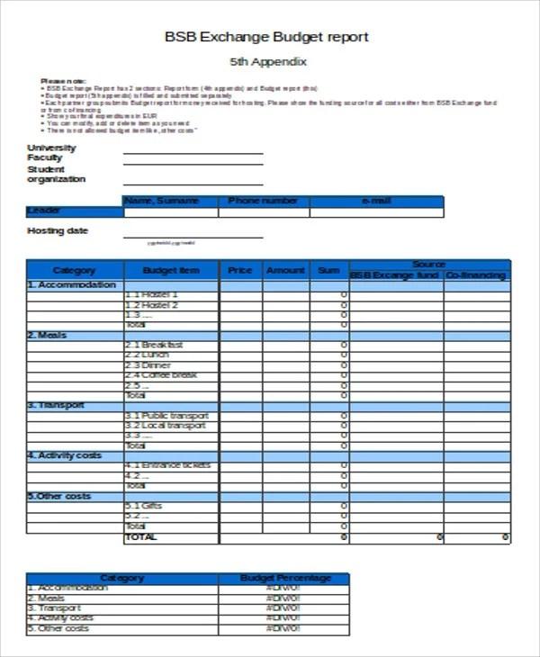 10+ Sample Budget Report Templates Free  Premium Templates