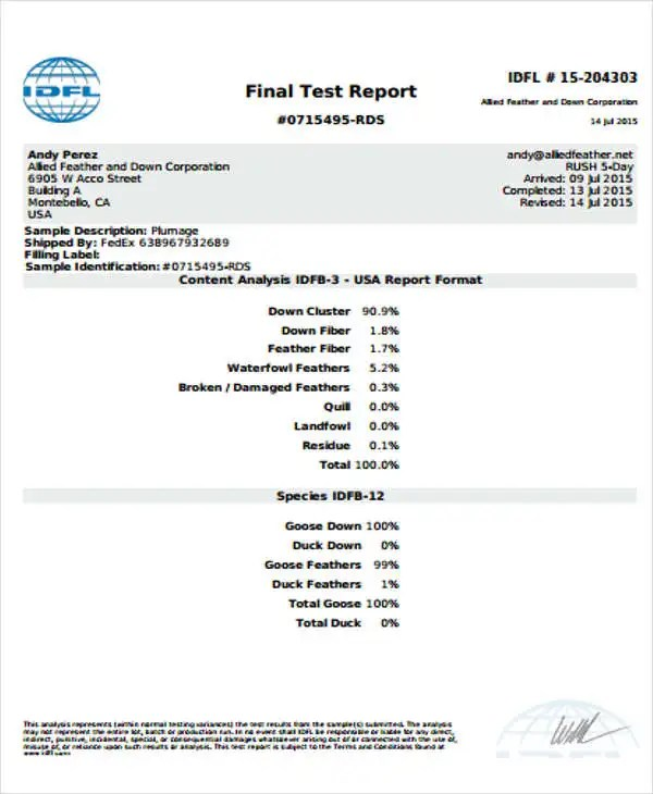 9+ Test Report Templates - Free Sample, Example Format Download - test report template