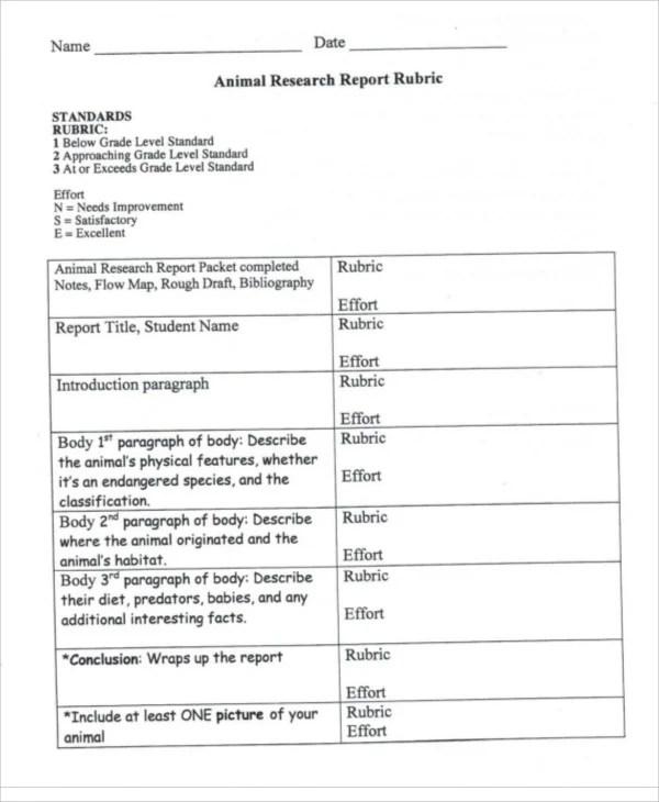 9+ Animal Report Templates - Word, PDF Free  Premium Templates