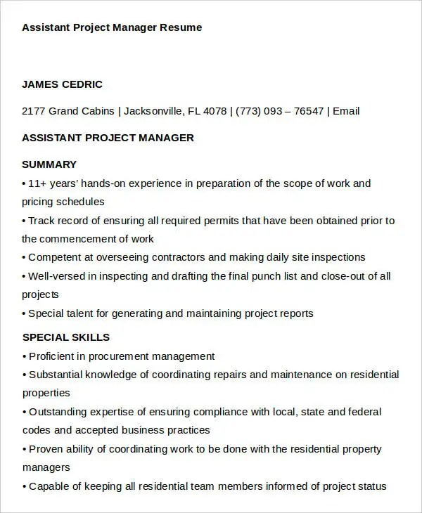 17+ Manager Resume Templates - PDF, DOC Free  Premium Templates - assistant project manager resume