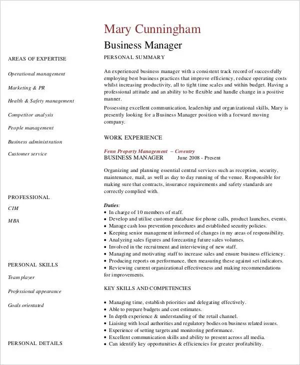 business owner cv examples
