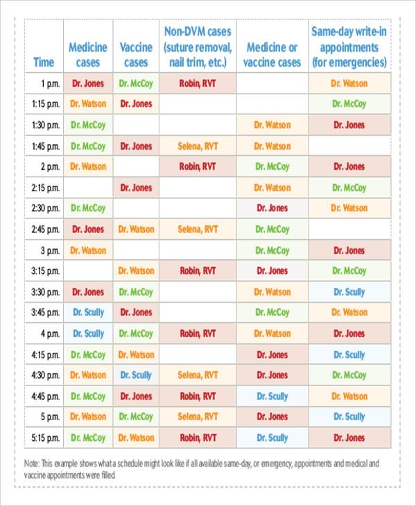 35+ Schedule Templates in PDF Free  Premium Templates