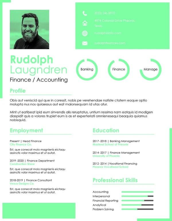 28+ Finance Resume Templates - PDF, DOC Free  Premium Templates