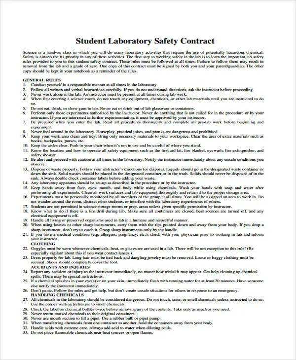 6+ Safety Contract Templates - Free Sample, Example Format Download