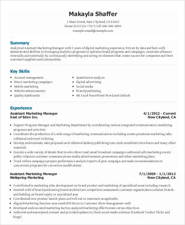 28+ Marketing Resume Templates - PDF, DOC Free  Premium Templates