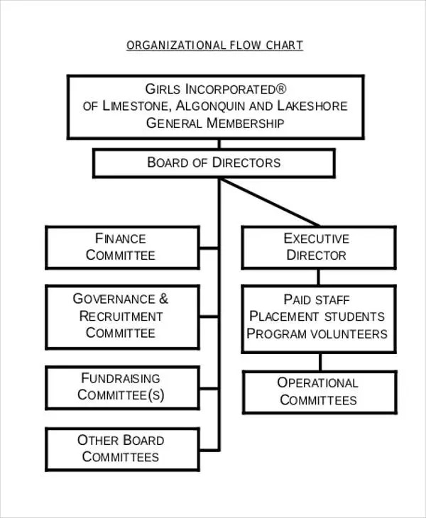 board of directors organizational chart template - Josemulinohouse