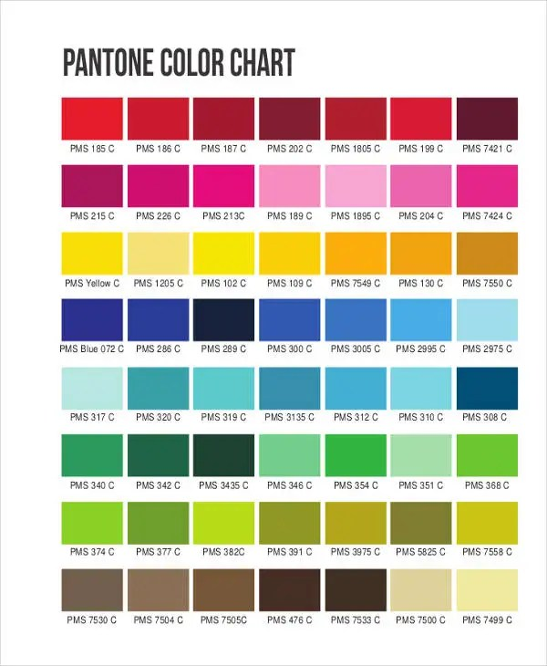 37+ Sample Chart Templates Free  Premium Templates - general color chart template