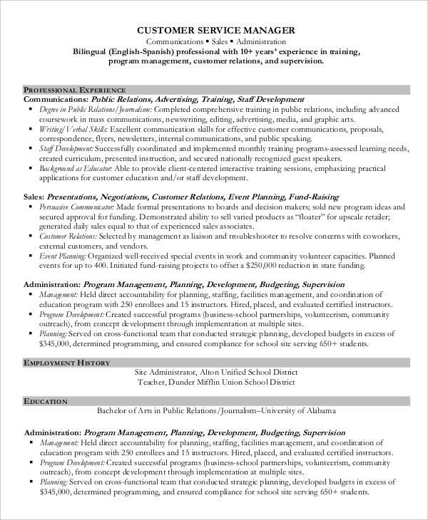 29+ Resume Examples - PDF, DOC Free  Premium Templates - example professional resumes