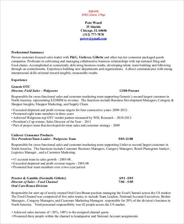 54 Manager Resumes in PDF Free  Premium Templates - national account manager resume