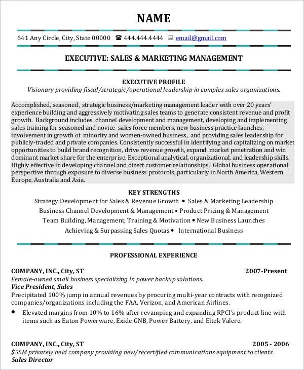 sales and marketing resume templates xv-gimnazija