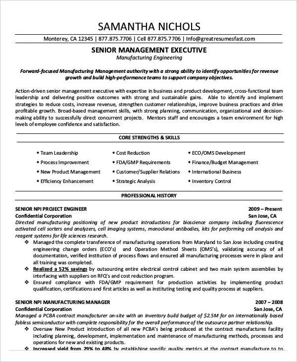 executive level resume sample