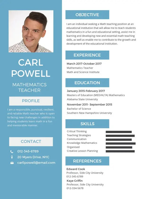 12+ Formal Curriculum Vitae - Free Sample, Example Format Download