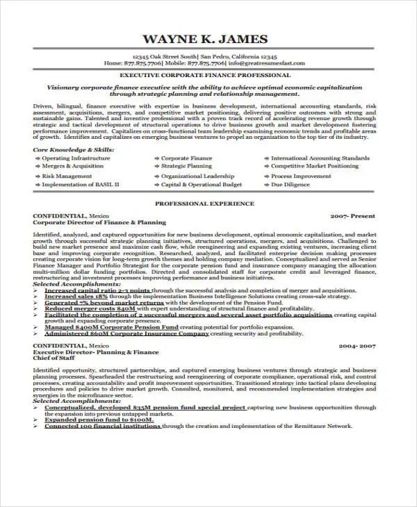 Finance Resume Examples- 28+ Word, PDF Documents Download Free - director of finance resume