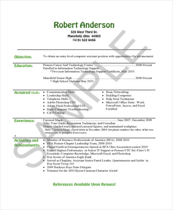 IT Resume Sample Professional Resume Examples TopResume