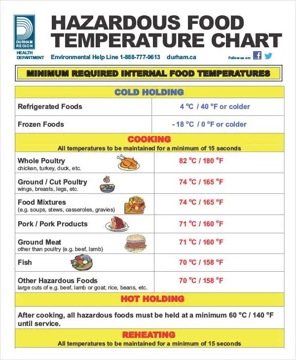 Temperature Chart Templates - 5+ Free Word, PDF Format Download