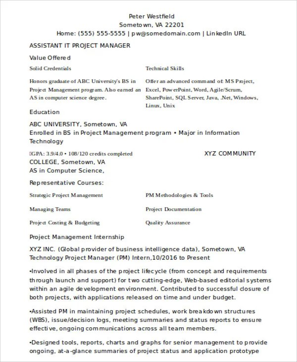 20+ IT Resume Samples - PDF, DOC Free  Premium Templates - assistant project manager resume