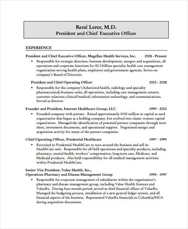 35+ Simple IT Resume Templates - PDF, DOC Free  Premium Templates