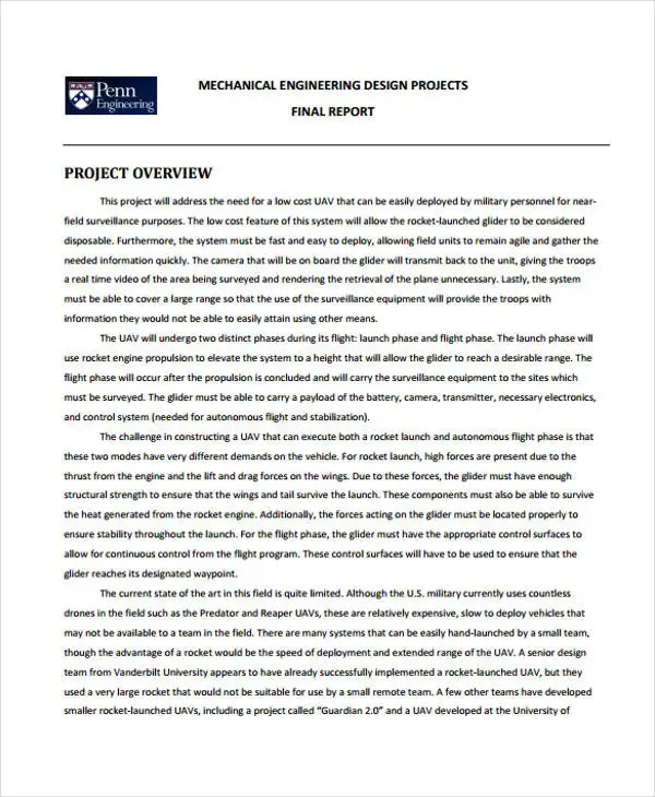 33 Project Report Samples Free  Premium Templates - project report