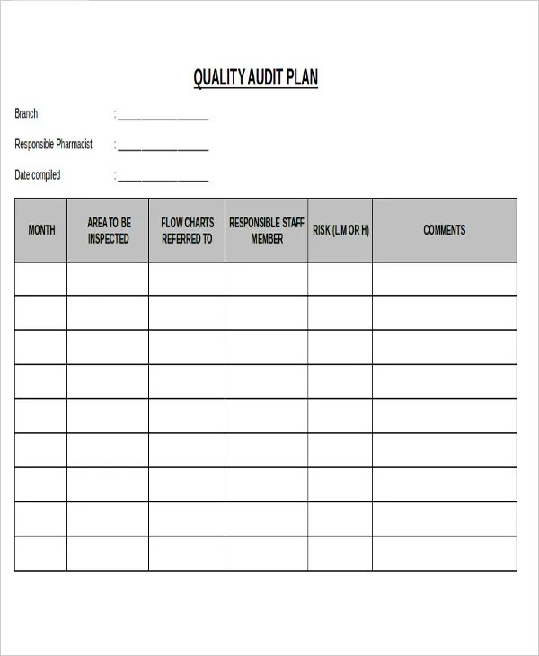 Audit Plan Templates -8+ Free Word, PDF Format Download Free