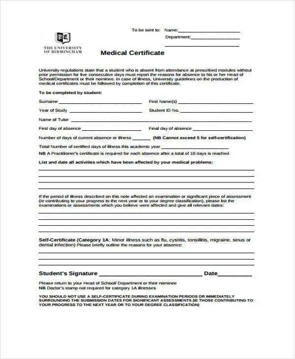 28+ Medical Certificate Templates in PDF Free  Premium Templates