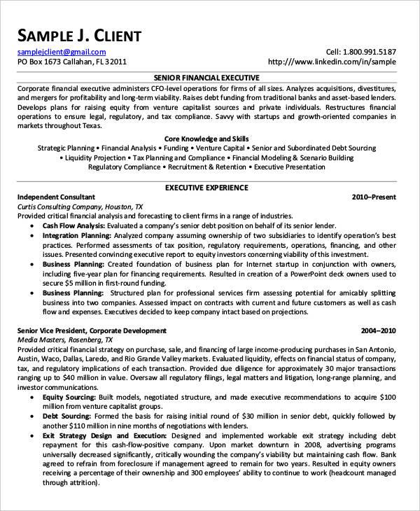 24+ Free Finance Resume Templates - PDF, DOC Free  Premium Templates - finance executive resume