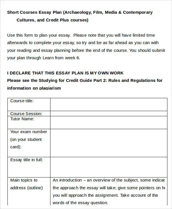 Examples Of Essay Plans Essay Writing Template Essay Plan  Business Plan Essay Example  Examples Of Essay Plans