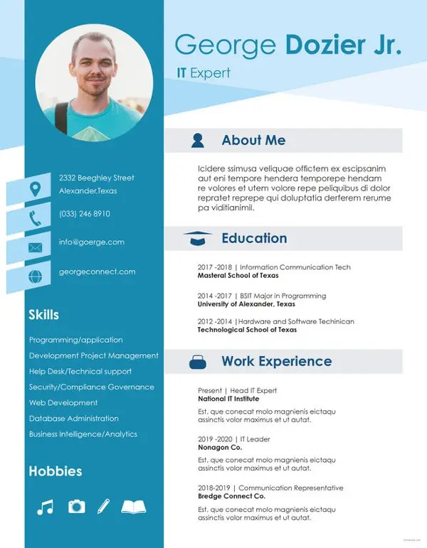 20+ Professional IT Resume Templates - PDF, DOC Free  Premium