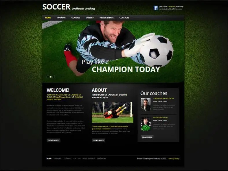 30+ Soccer Club Website Themes  Templates Free  Premium Templates