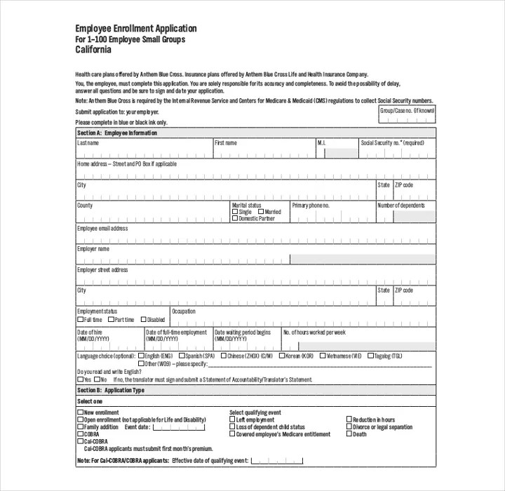 10 What Is A Job Application Form Budget Template Letter Simple - application form in doc