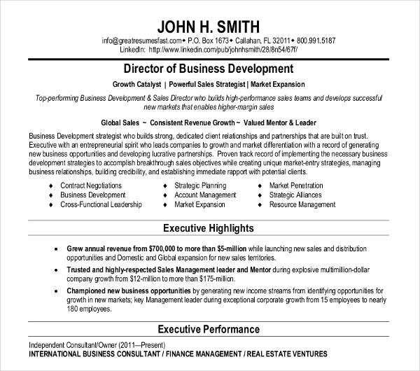20+ Basic Business Resume Templates - PDF, DOC Free  Premium - business development resumes