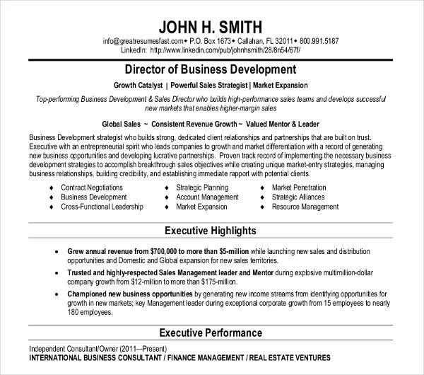director of business development resume templates