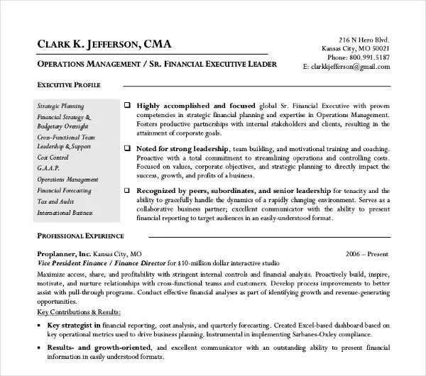 24+ Free Finance Resume Templates - PDF, DOC Free  Premium Templates - financial resume example