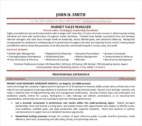 10+ Sales Manager Resume Templates - PDF, DOC Free  Premium Templates - sample sales manager resume