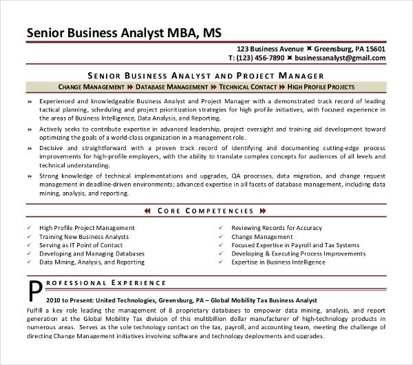 10+ Business Analyst CV Templates - PDF, DOC Free  Premium Templates - senior business analyst resume