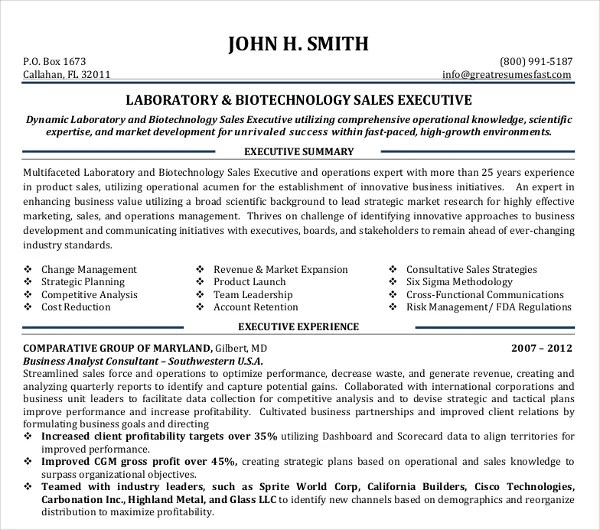 9+ Sales Executive Resume Templates - PDF, DOC Free  Premium