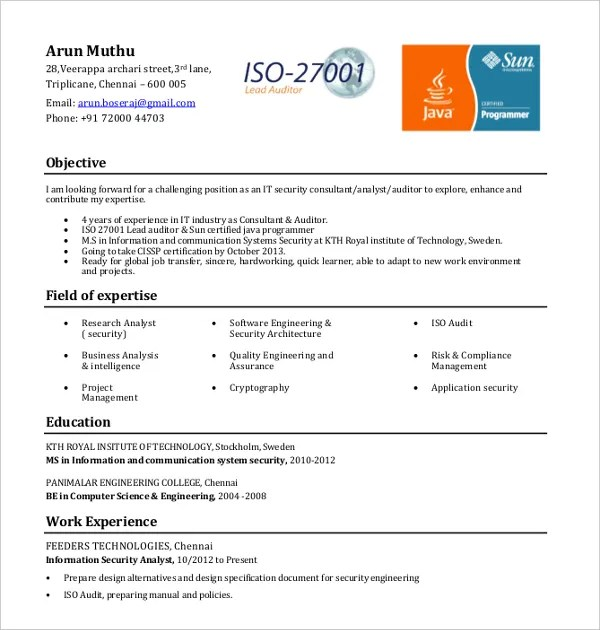 10+ IT Resume Templates - PDF, DOC Free  Premium Templates