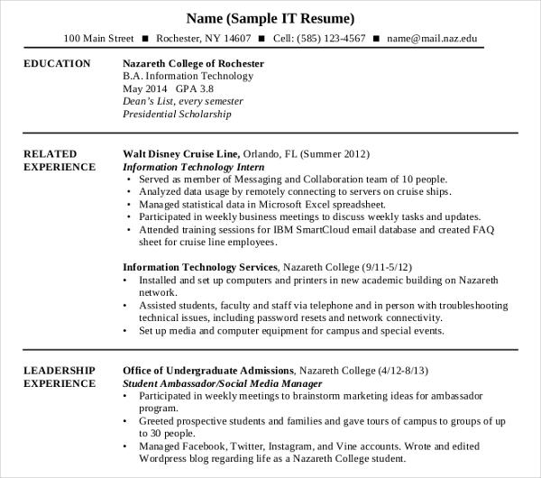 25+ Professional IT Resume Templates - PDF, DOC Free  Premium