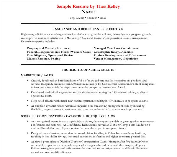 14+ Executive Resume Templates - PDF, DOC Free  Premium Templates