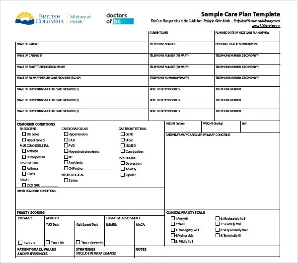 12+ Patient Care Plan Templates - PDF, DOC Free  Premium Templates